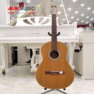 قیمت گیتار پارسی m5 فروشگاه آلیک