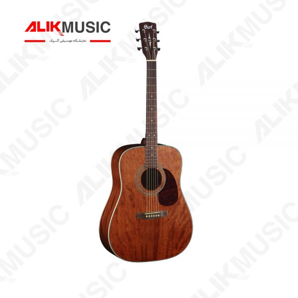 گیتار آکوستیک earth 70 MH