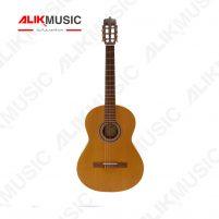 گیتار کلاسیک پارسی M5
