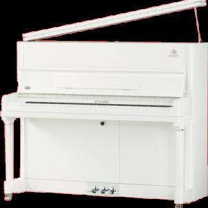 پیانو آکوستیک ROSSINI ES650 WHP