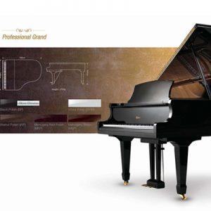 پیانو آکوستیک ACOUSTIC PIANO Weber 150-BK